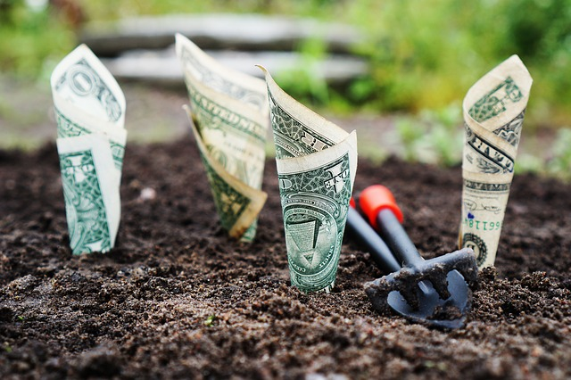 money 1604921 640 Sowing the Seed of Financial Success